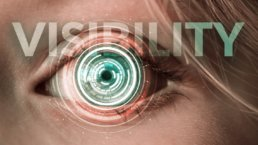 Visibility Eye