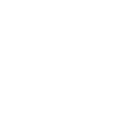 Monitor Coding Icon