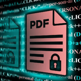 PDF Personal Data Security