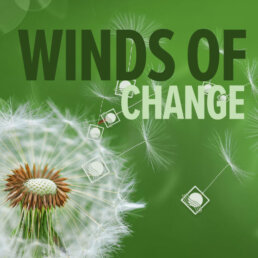 Feature Image, Solimar Systems Blog, Winds of Change